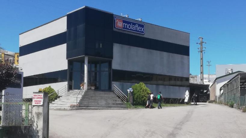 Molaflex de Santa Maria da Feira despede 150 trabalhadores