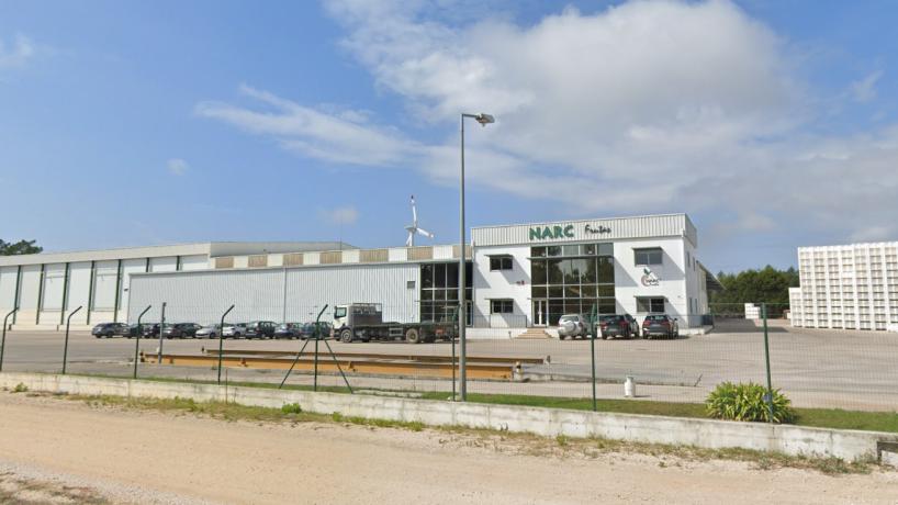 Narc Frutas: cooperativa de Alcobaça despede sucessivamente durante período experimental